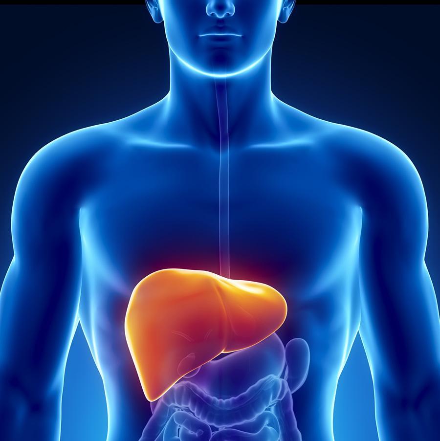 Hepatite: sintomas, causas e tratamentos.