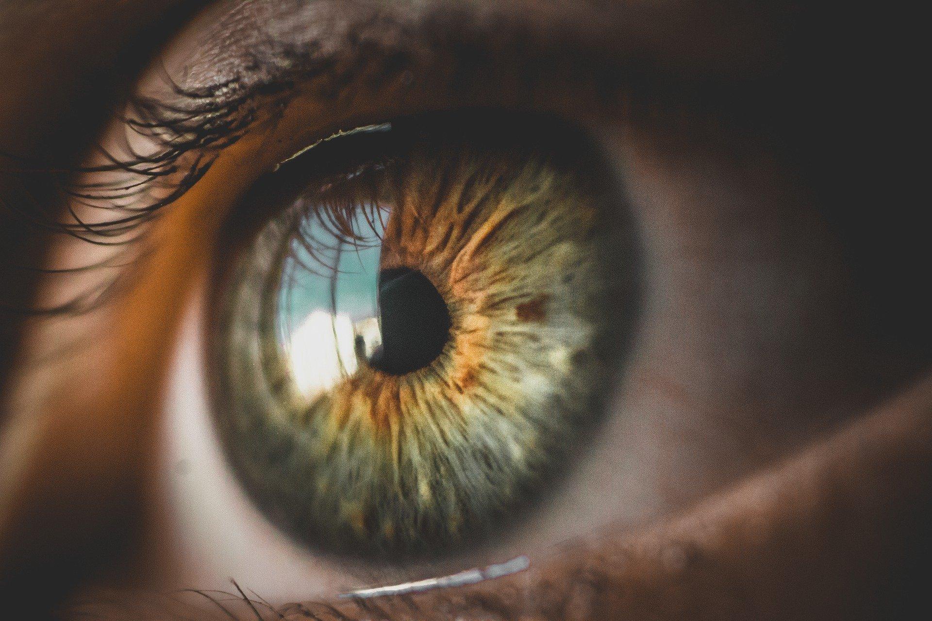 Você sente tremor nos olhos? Por que isso acontece?